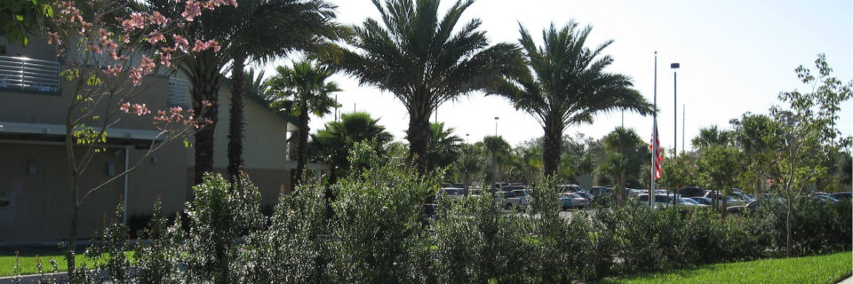 Providing the highest quality Landscape and Irrigation packages available,